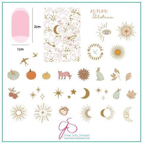 CJS Plate Autumn Solstice - Clear Jelly Stamper 8x8